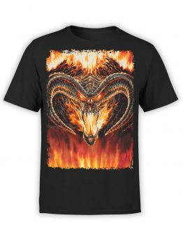 """Lord of the Rings Shirt """"Balrog"""". Cool Shirts."""