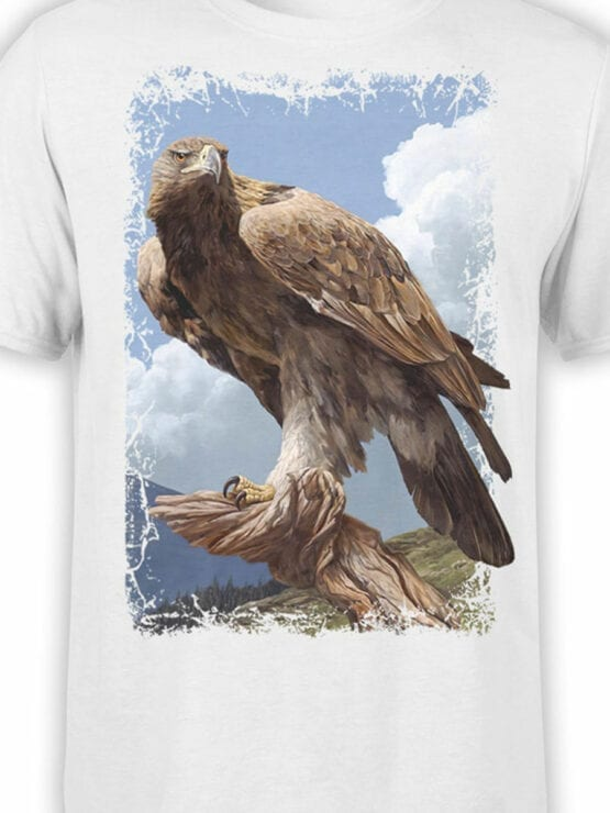 1479 The Lord of the Rings T Shirt Eagle Front Color