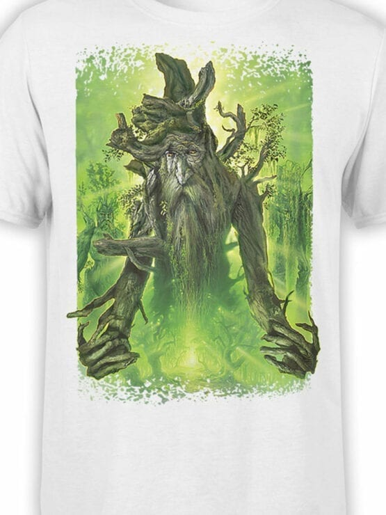 1494 The Lord of the Rings T Shirt Ent Front Color