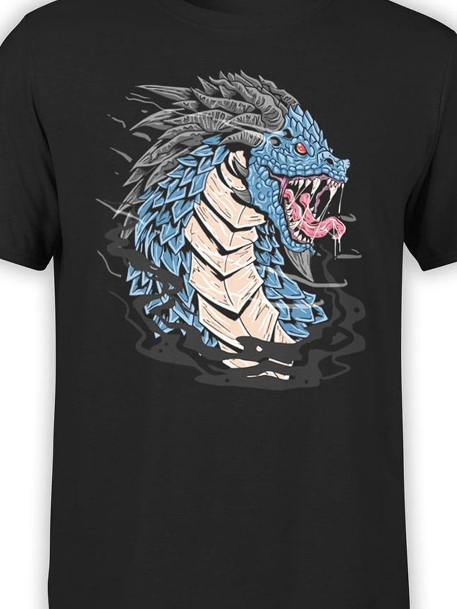 1972 Dragon T Shirt Front Color